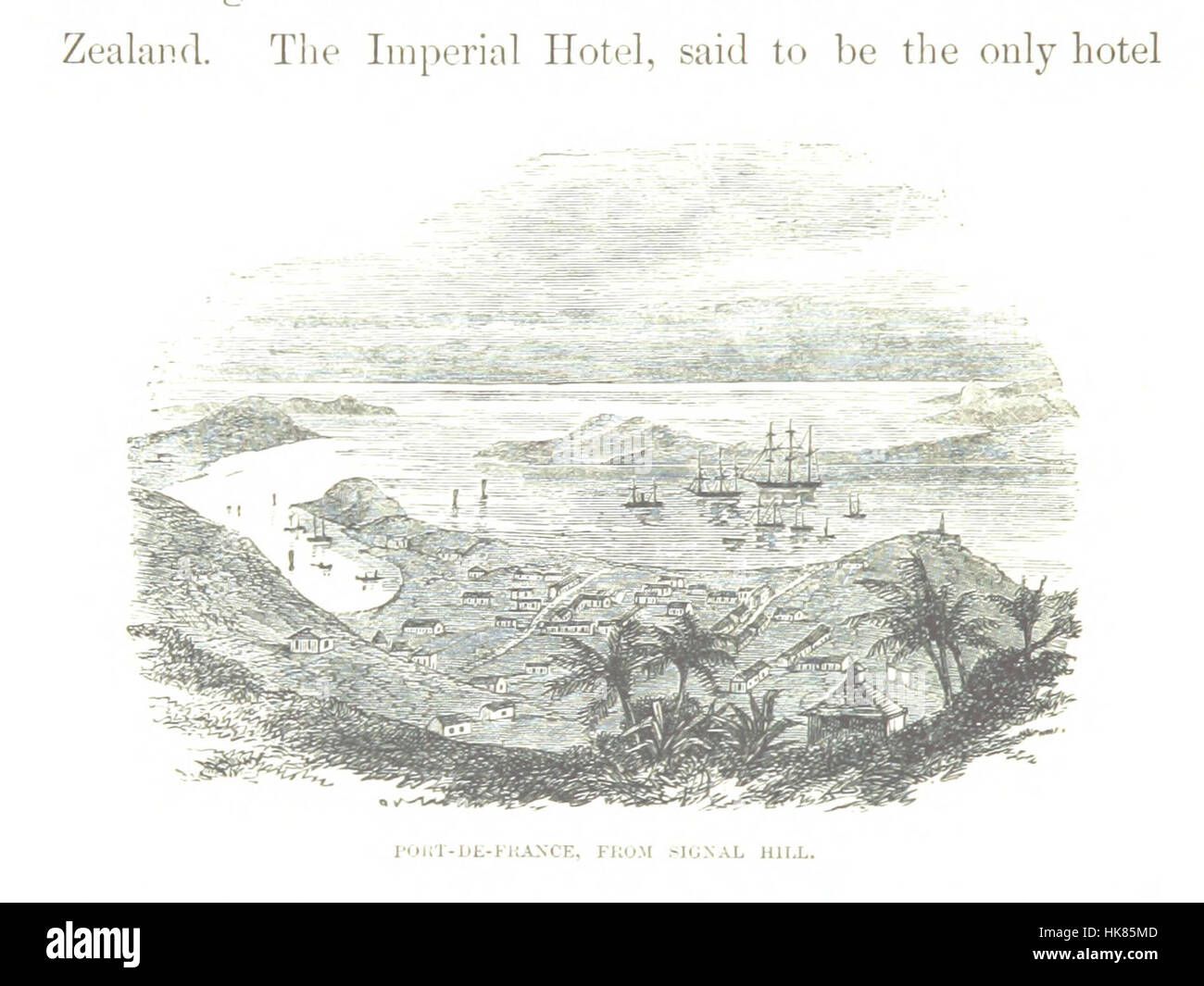 Jottings during the Cruise of H.M.S. Curaçoa among the South Sea Islands in 1865 ... With ... natural history notices - Stock Image