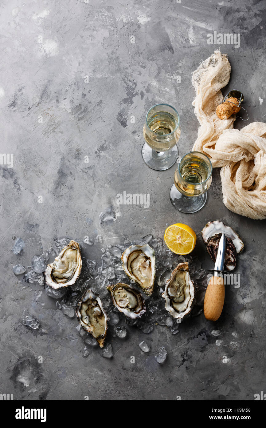 Open Oysters and champagne on gray concrete texture background copy space - Stock Image