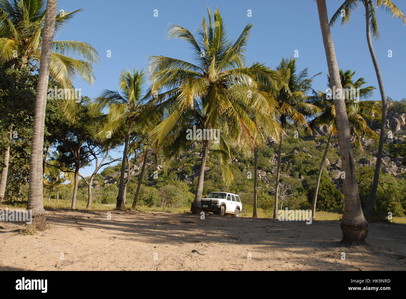 4WD Toyota Landcruiser parked off road under a coconut palm at the beach at Radical Bay, Magnetic Island, Queensland, - Stock Image
