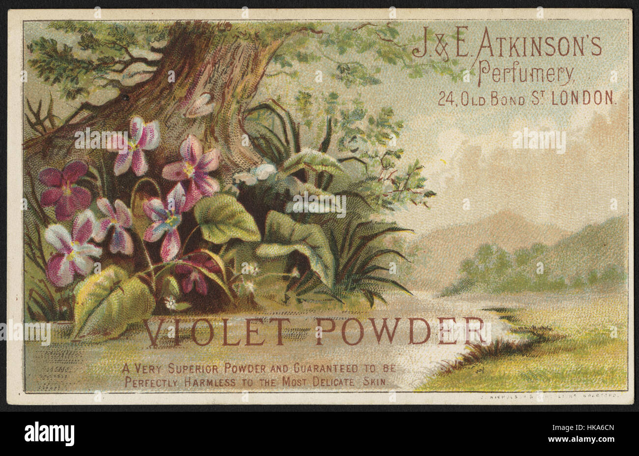 Violet Powder, a very superior powder and guaranteed to be perfectly harmless to most delicate skin. - Stock Image