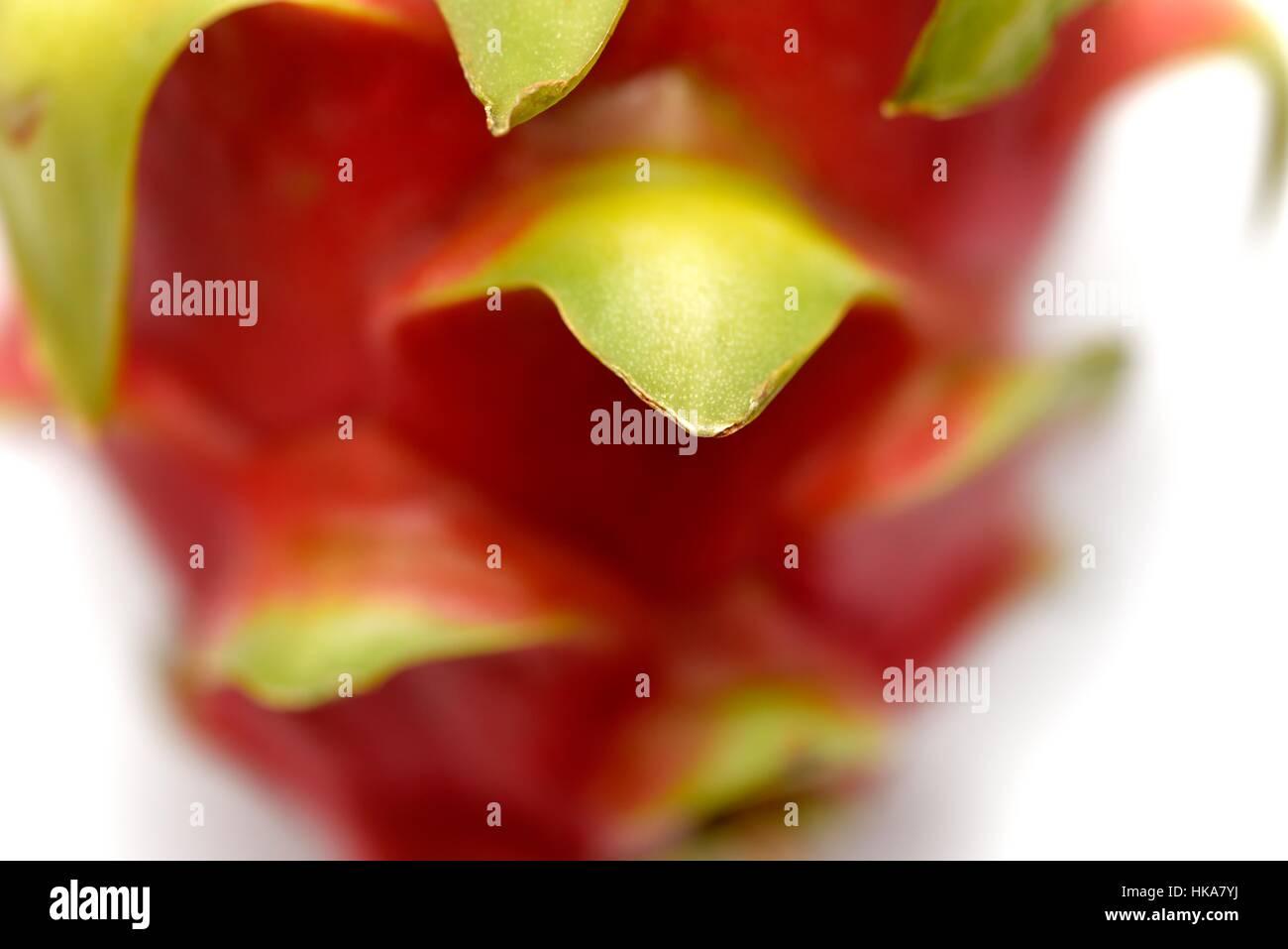 Pitaya Pitahaya blanca white fruit close up macro. - Stock Image