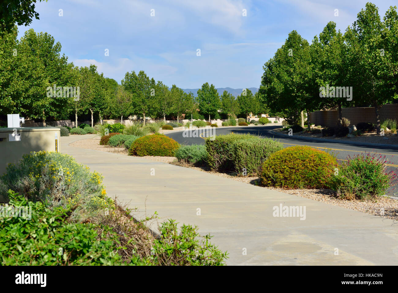 Suburban Street Landscaping In Dry Climate Of Yavapai County Stock