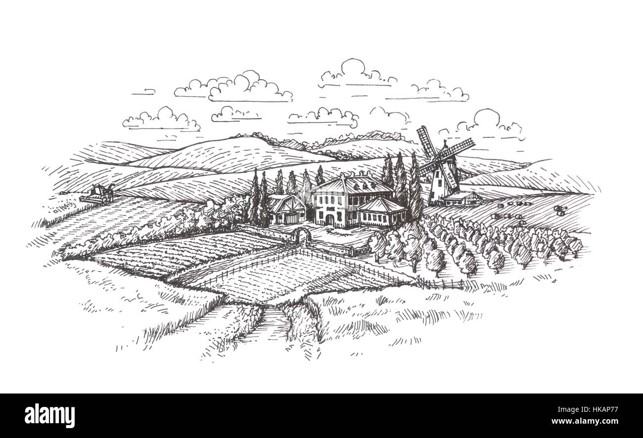 Vintage landscape. Farm, agriculture or wheat field sketch Stock ... for Farm Field Sketch  157uhy
