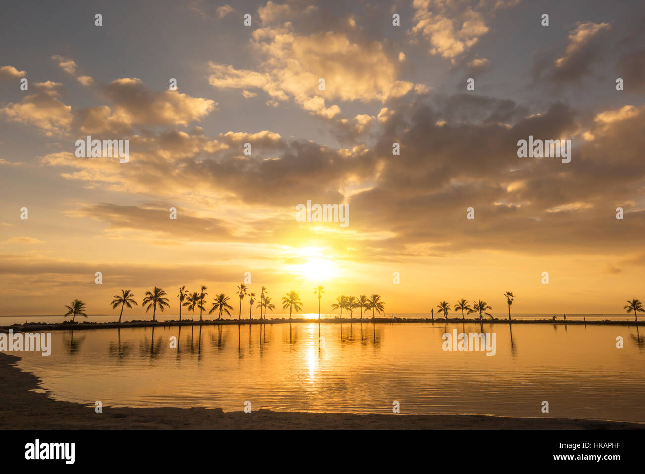REFLECTING POOL ATOLL MATHESON HAMMOCK COUNTY PARK MIAMI FLORIDA USA - Stock Image