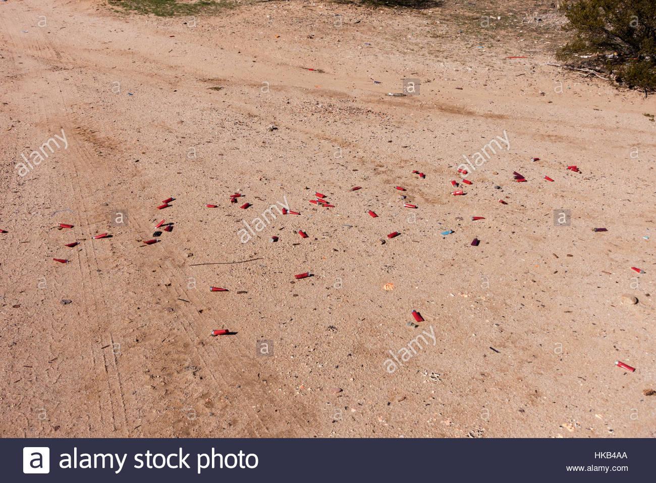 Fired shotgun shells littering desert Arizona - Stock Image