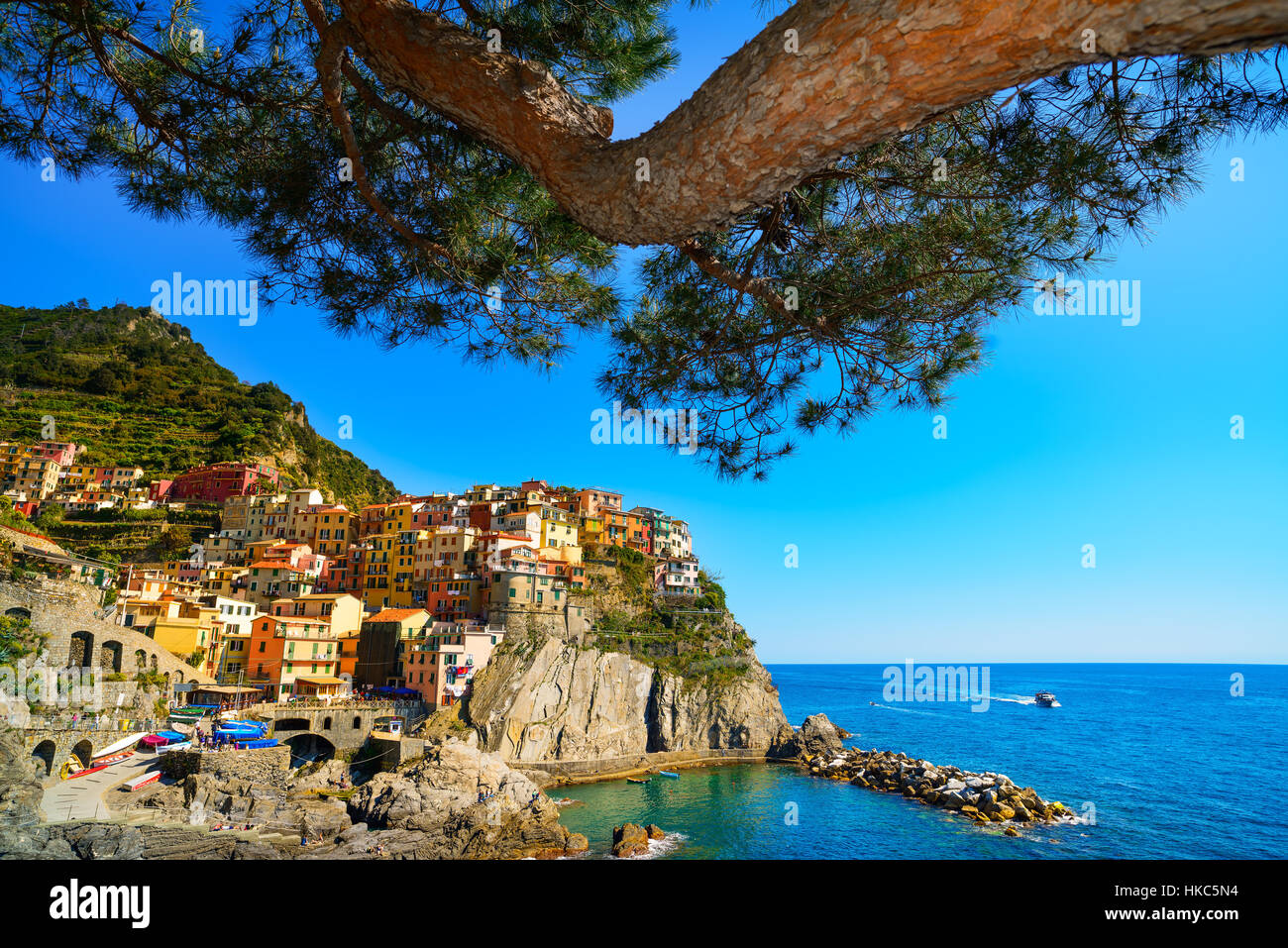 Manarola village and pine tree on cliff rocks and sea at sunset., Seascape in Five lands, Cinque Terre National - Stock Image