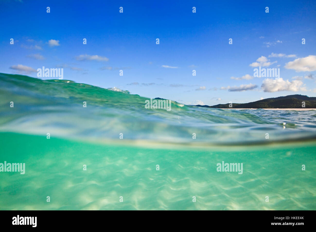 Half-submerged in clean transparent green salt water of coral sea at white silica Whitehaven beach on Whitsunday Stock Photo