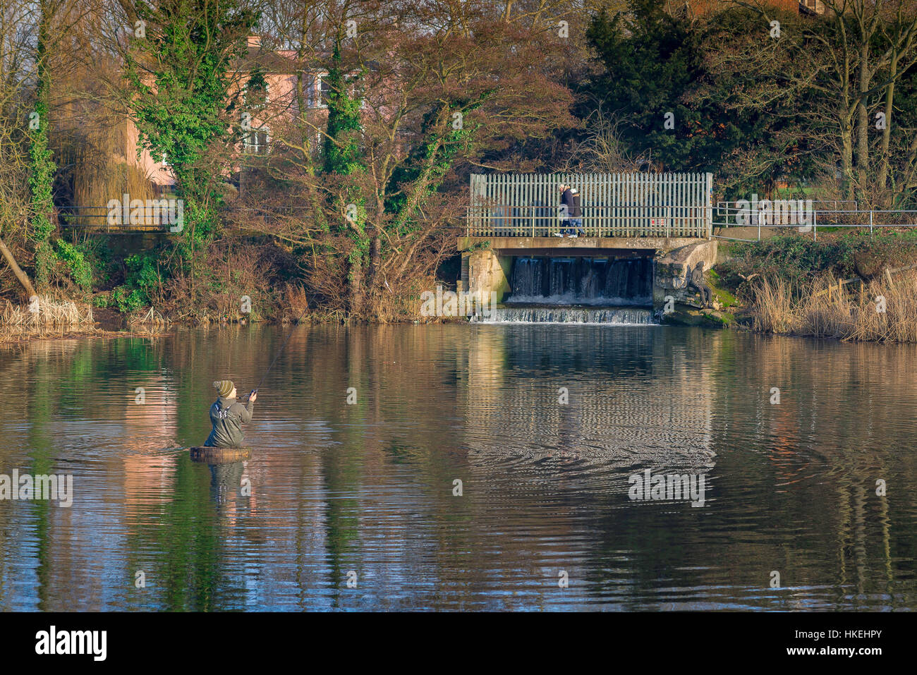A young man fishes in a freshwater pool along the River Stour near Sudbury in Suffolk, Babergh district, UK. - Stock Image