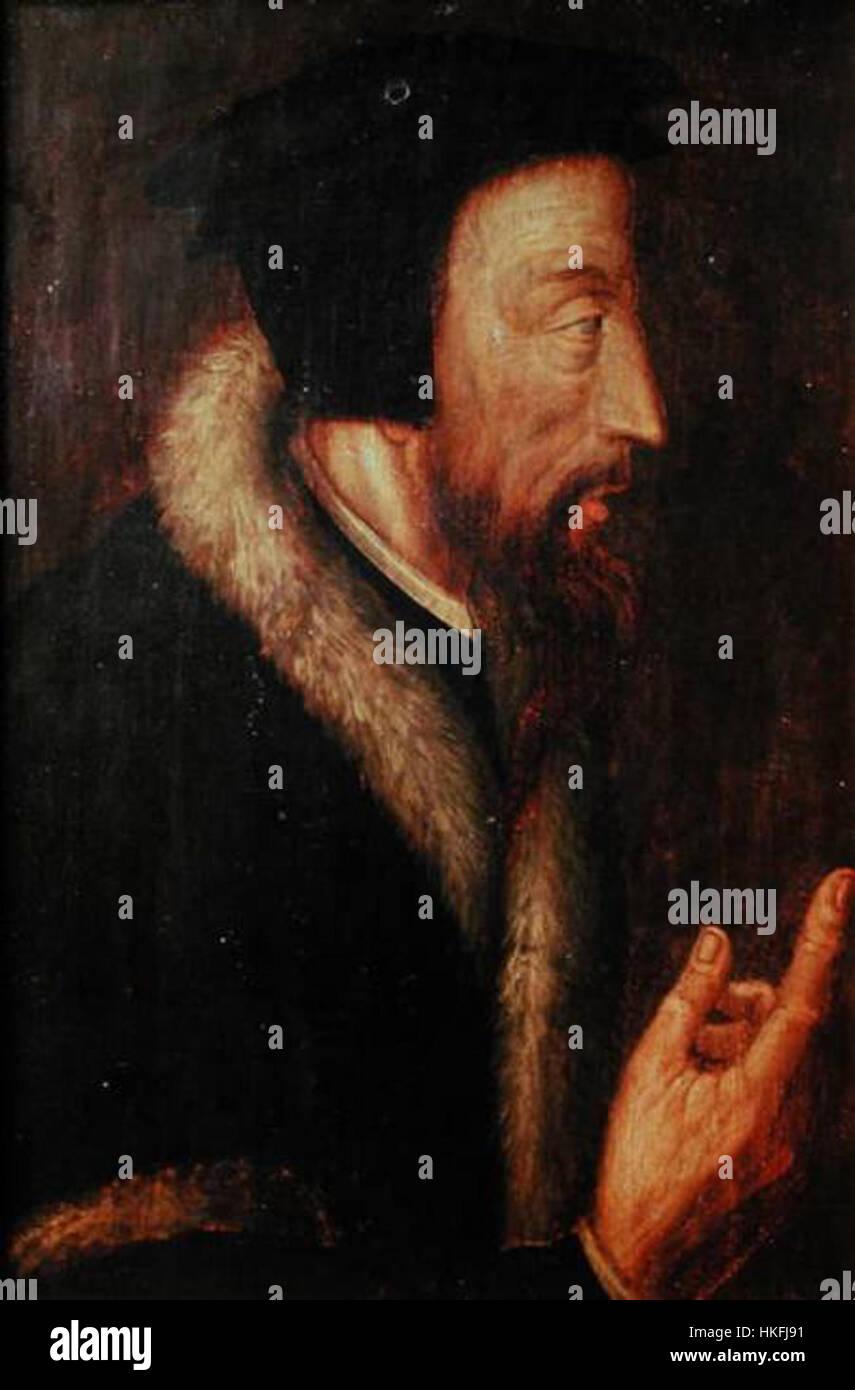Portrait john calvin - Stock Image