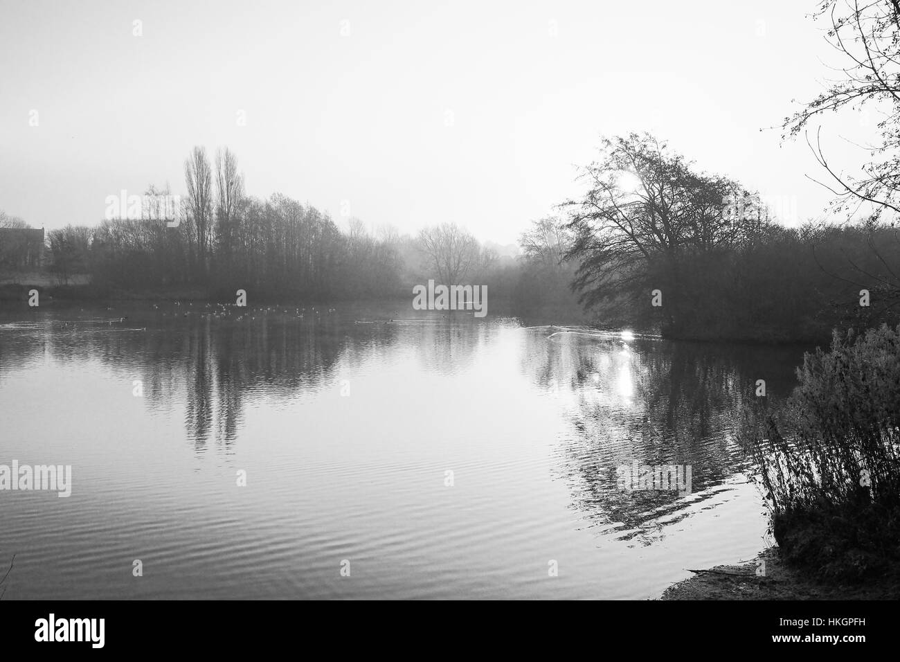 Mist lingers over a calm woodland lake on a cold winter morning - Stock Image