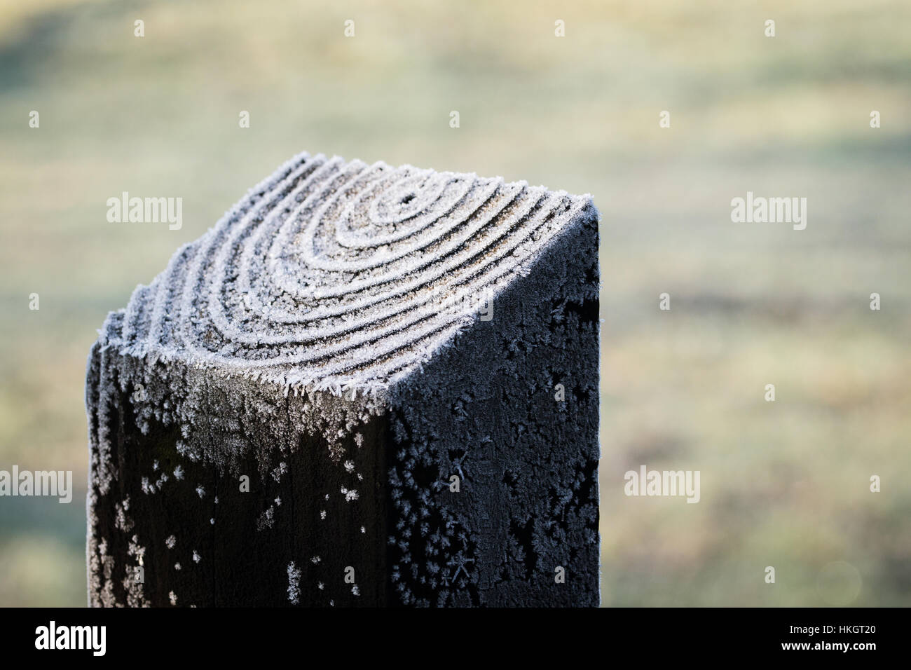 Close up of frost on the ridges of a fence post - Stock Image