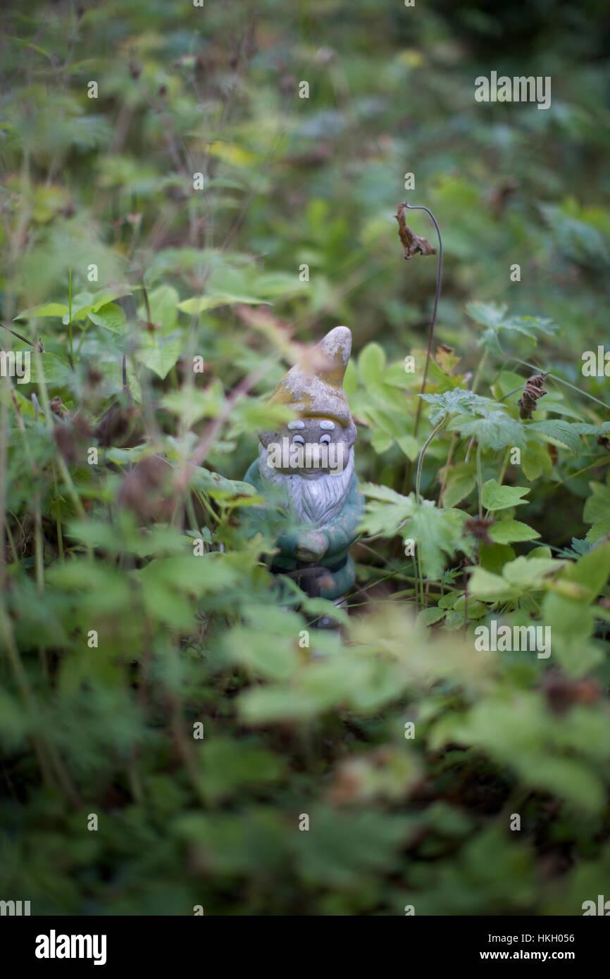 garden gnome amid leaves. figurine, garden, fairytale, elf. - Stock Image