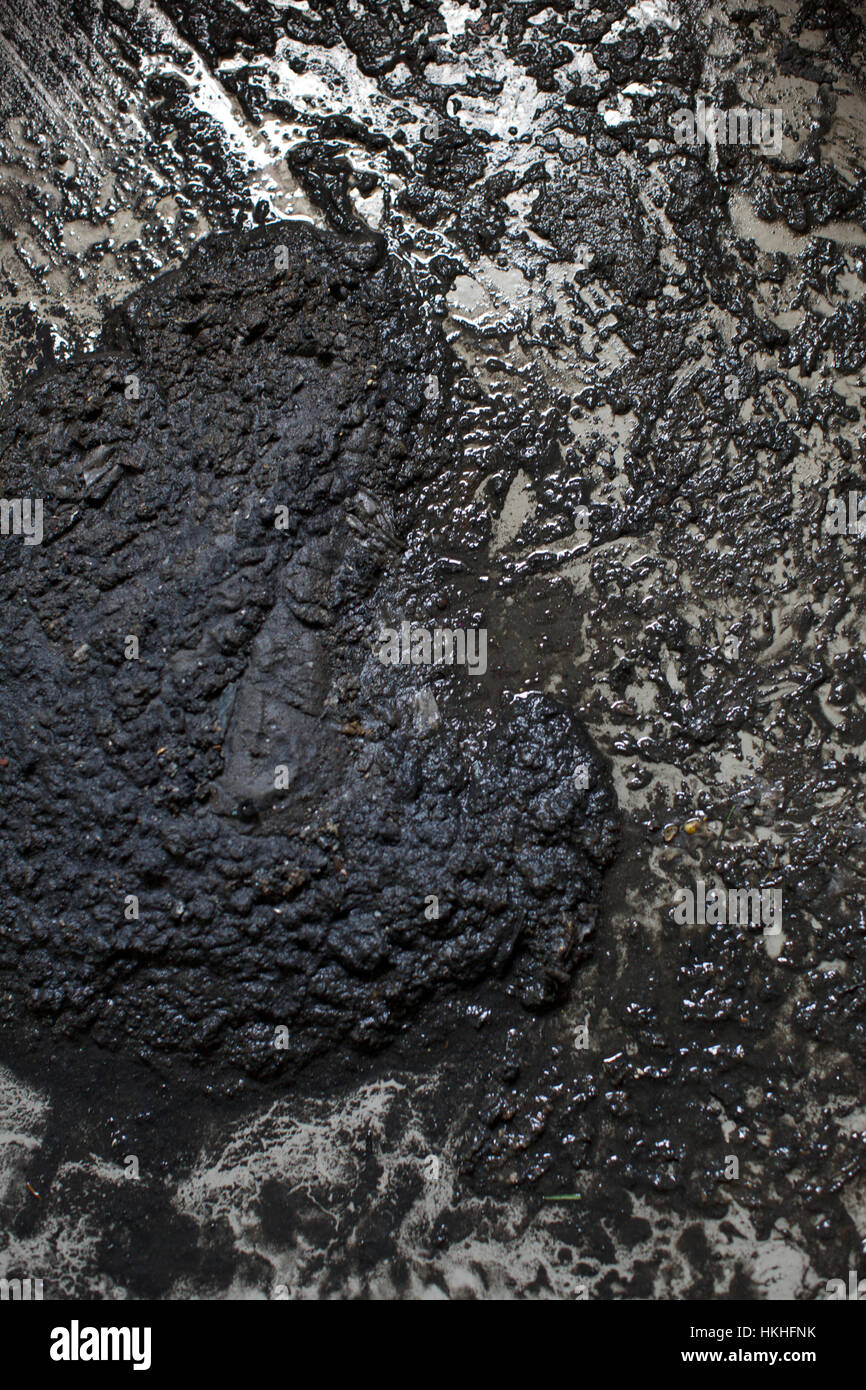 wet mud on floor. unhygienic, cloudburst, messy, nature. - Stock Image