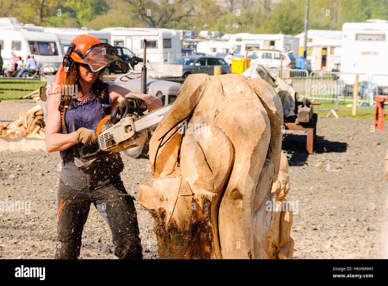 Woman uses a Stihl chainsaw to carve a tree trunk into the shape of an animal. - Stock Image