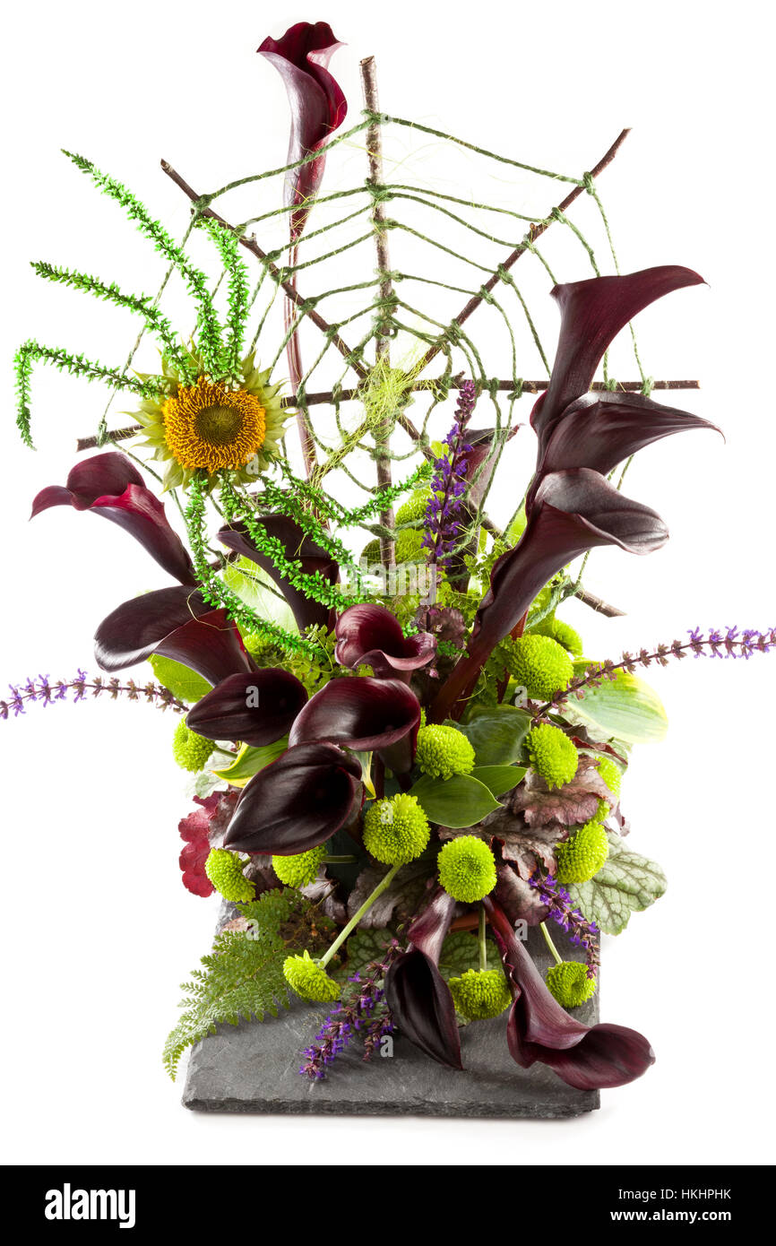 A floral arrangement with a Halloween theme using a spider made of flowers and a handmade web of sticks and green - Stock Image