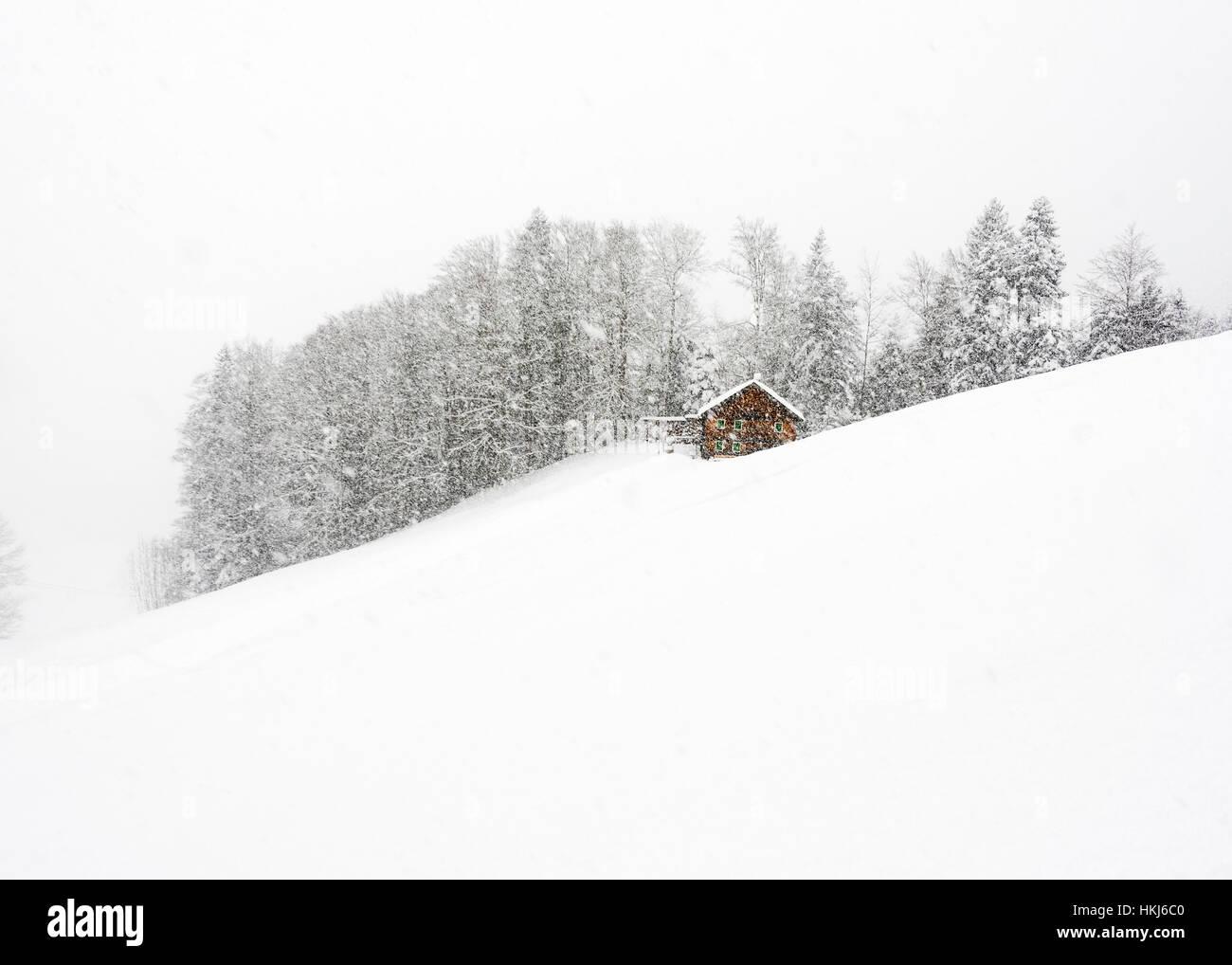 Mountain hut in front of winter forest, dense snowfall, Hittisau, Bregenz Forest, Vorarlberg, Austria Stock Photo