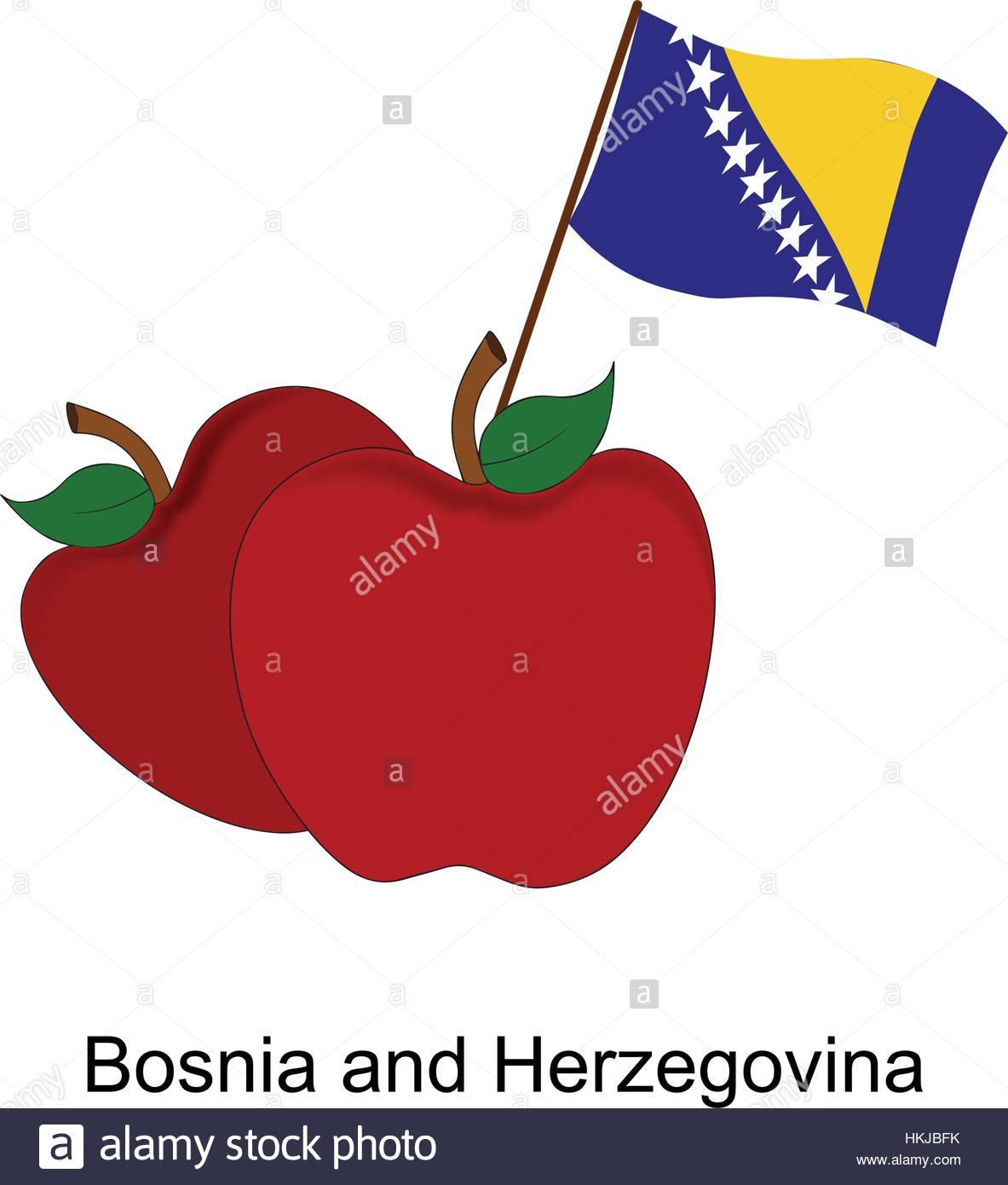 Illustration of Apple, Bosnia and Herzegovina Flag, Apple with Bosnia and Herzegovina Flag - Stock Vector