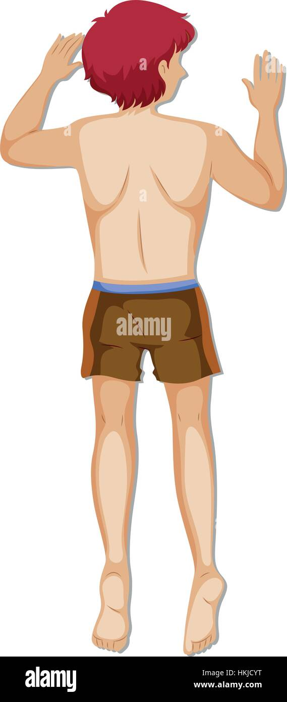 Back of man in brown shorts illustration - Stock Vector