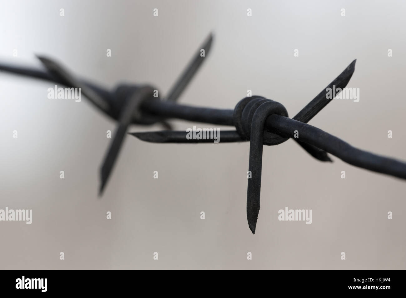 Rusting Barbed Wire Stock Photos & Rusting Barbed Wire Stock Images ...
