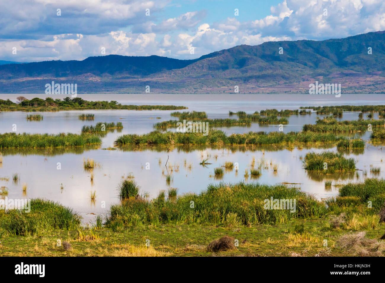 Lake Chamo, Ethiopia - Stock Image