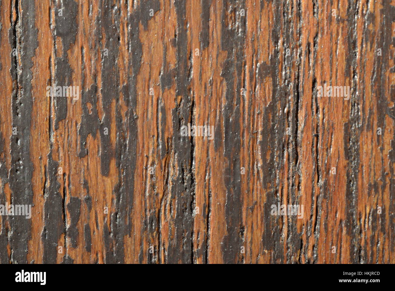 Close up of wooden texture - Stock Image