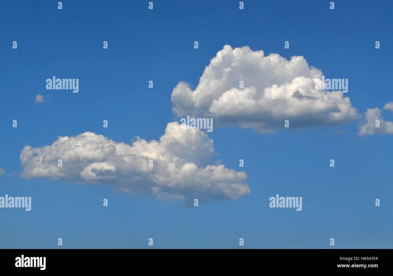 Fluffy white Cumulonimbus clouds against brilliant blue sky - Stock Image