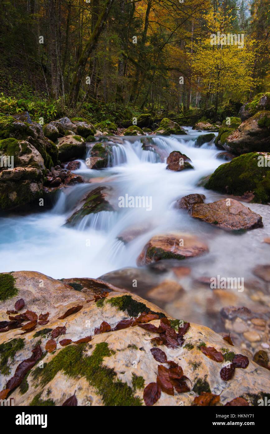 Hammersbach, stream, Grainau, Garmisch, Garmisch-Partenkirchen, Upper Bavaria, Bavaria, Germany - Stock Image