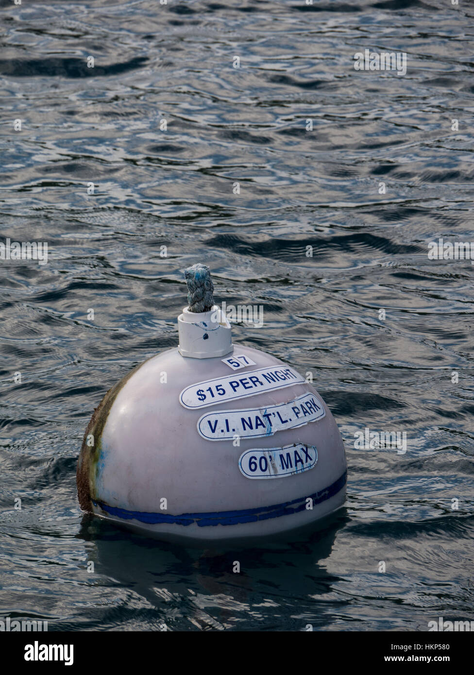 Mooring float, Leinster Bay, Virgin Islands National Park, St. John Island, U.S. Virgin Islands. - Stock Image