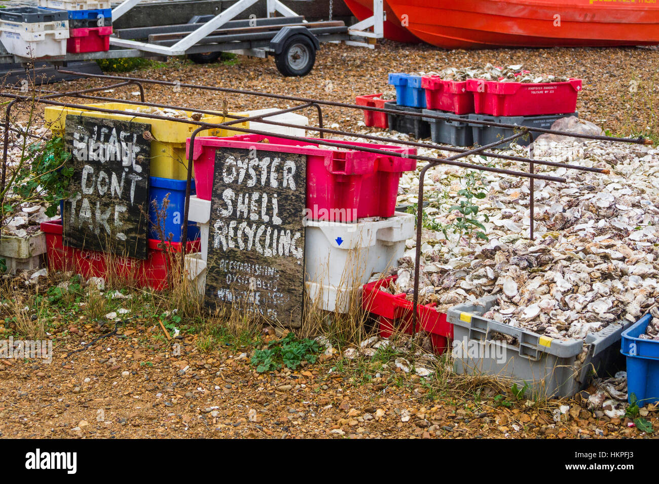 Oyster shells for recycling in Whitstable, Kent, UK. They are put on the seabed to provide cultch for baby oysters Stock Photo