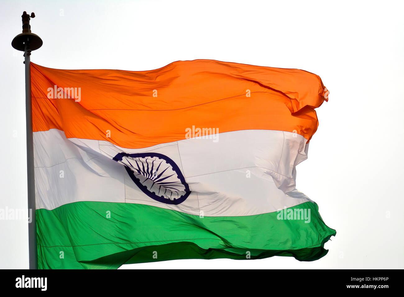 Indian Flag Butterflies: Tiranga Stock Photos & Tiranga Stock Images