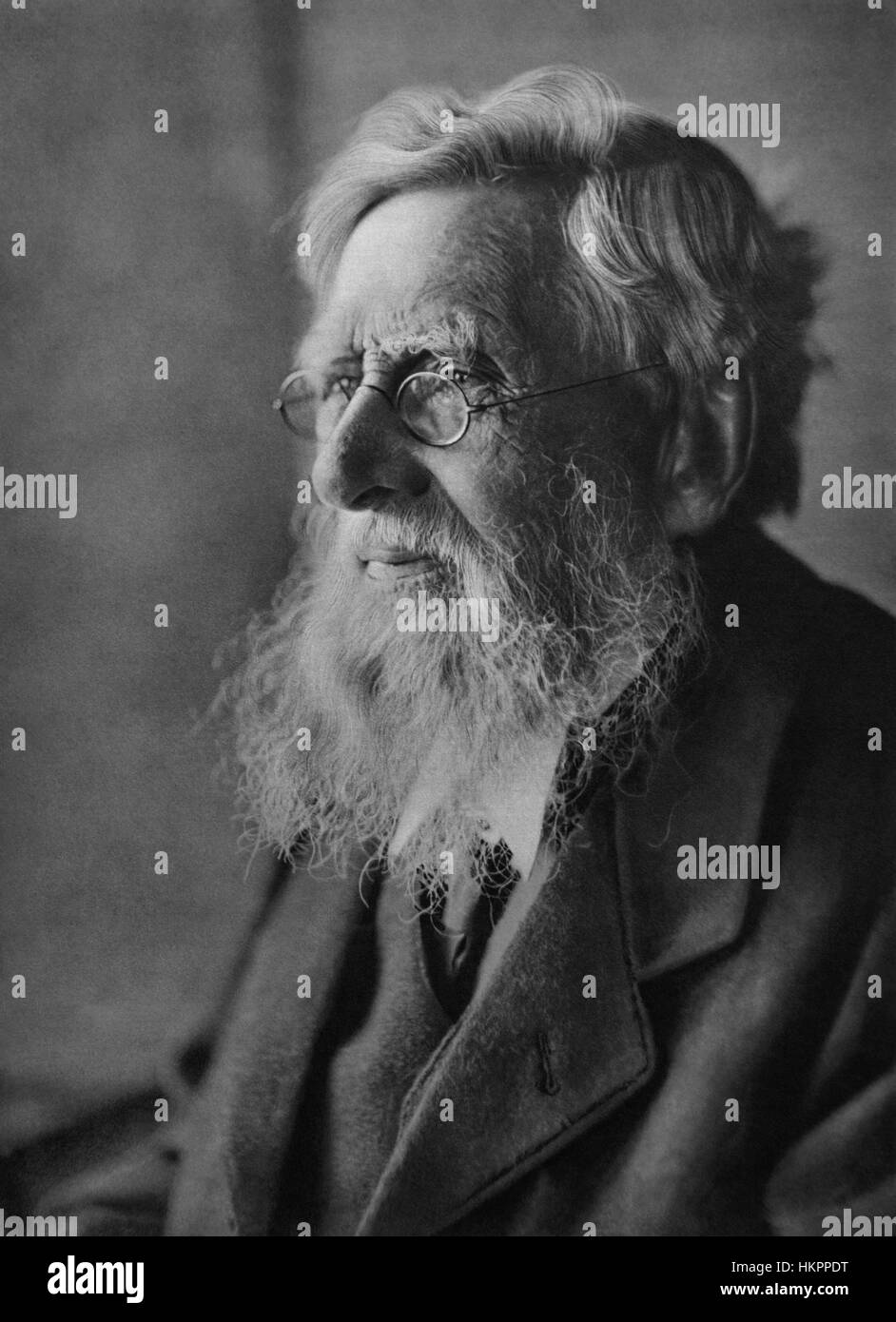 Alfred Russel Wallace, co-developer of the theory of evolution by natural selection, in a portrait by Emil Otto - Stock Image