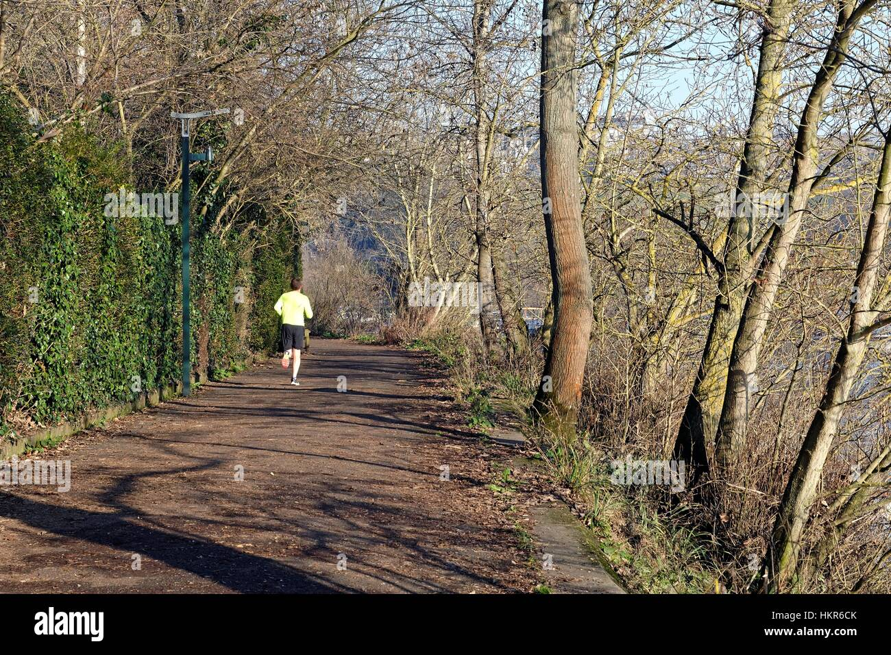 Runner on towpath at Richmond Surrey UK - Stock Image