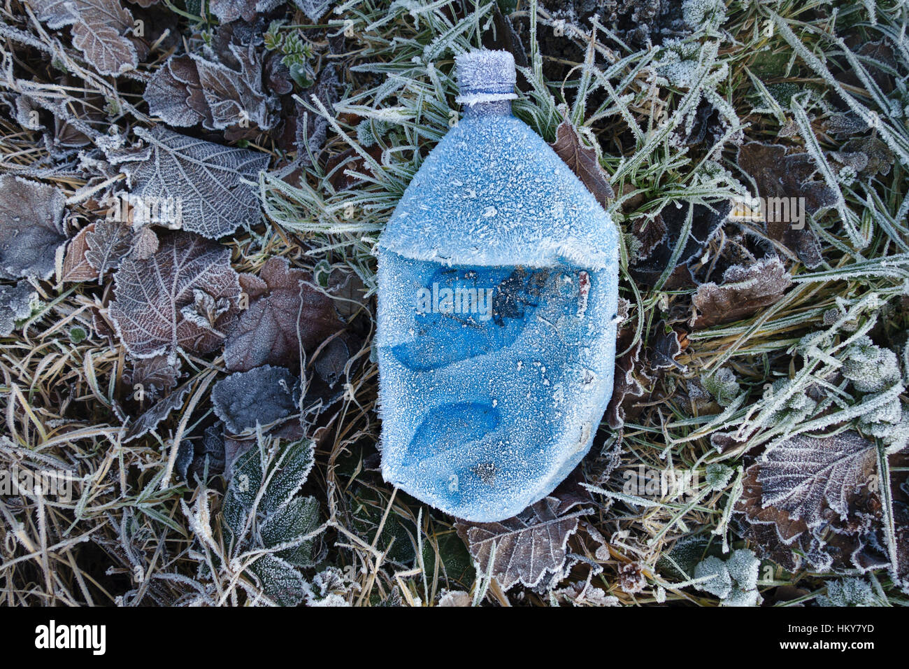 A blue plastic drinks bottle covered in frost on a roadside verge in winter Stock Photo