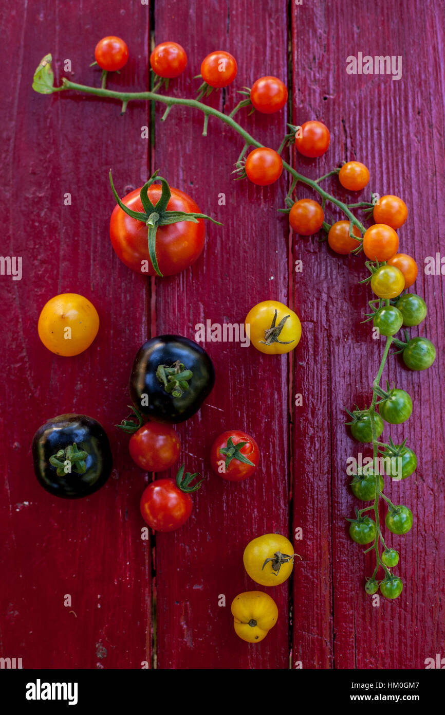 Variety of heirloom tomatoes in a rustic bowl and on a light wood surface - Stock Image