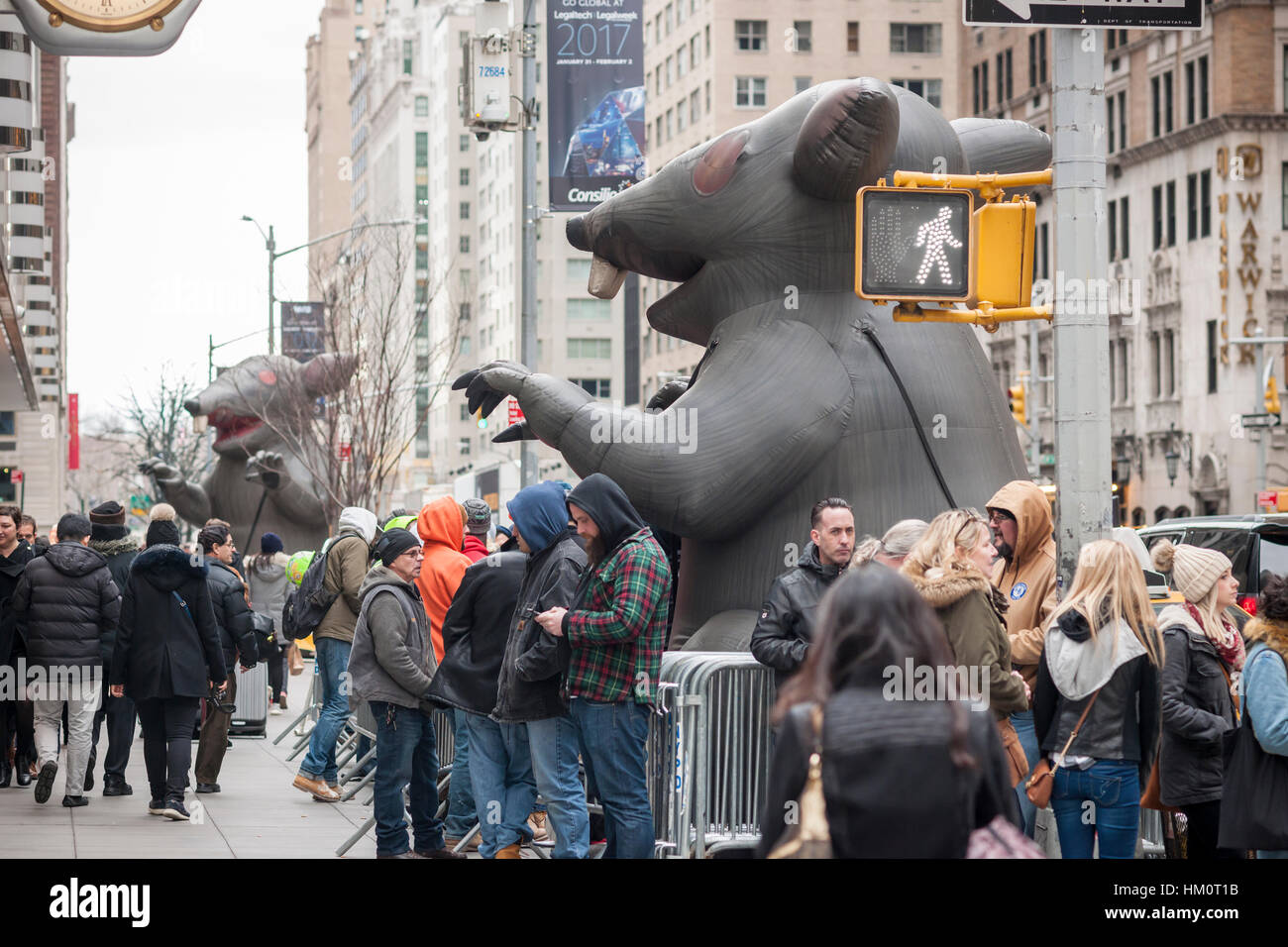 Not one, but two inflatable union rats terrorize passer-by and visitors to the New York Hilton hotel on Friday, - Stock Image