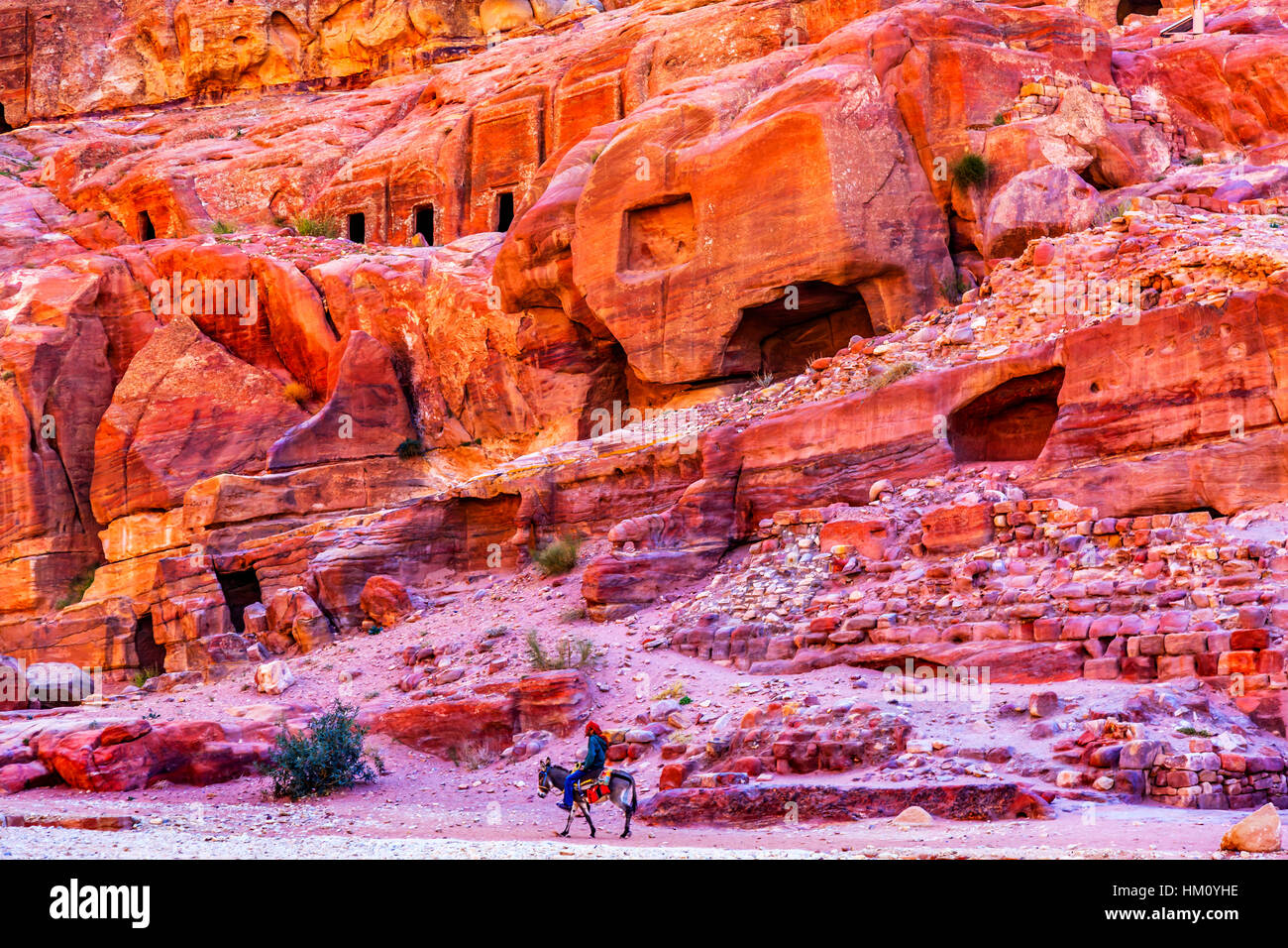 Donkey Rose Red Rock Tombs Afternoon Street of Facades Petra Jordan.  Built by the Nabataens in 200 BC to 400 AD. - Stock Image