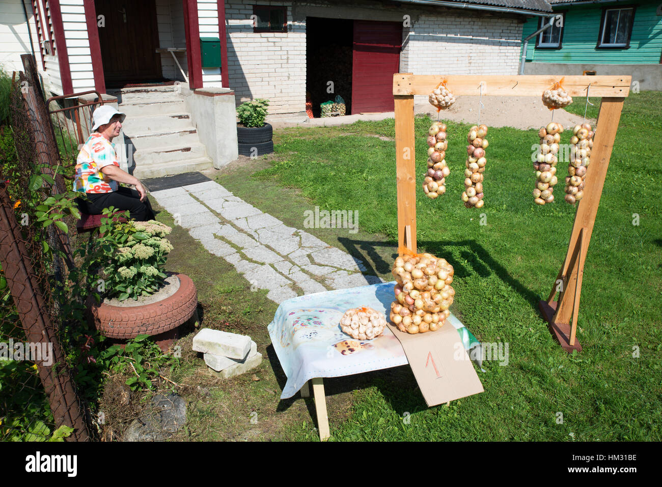 An Old Believer woman selling onion bundles in front of her house, Kolkja, Tartu county, Estonia - Stock Image