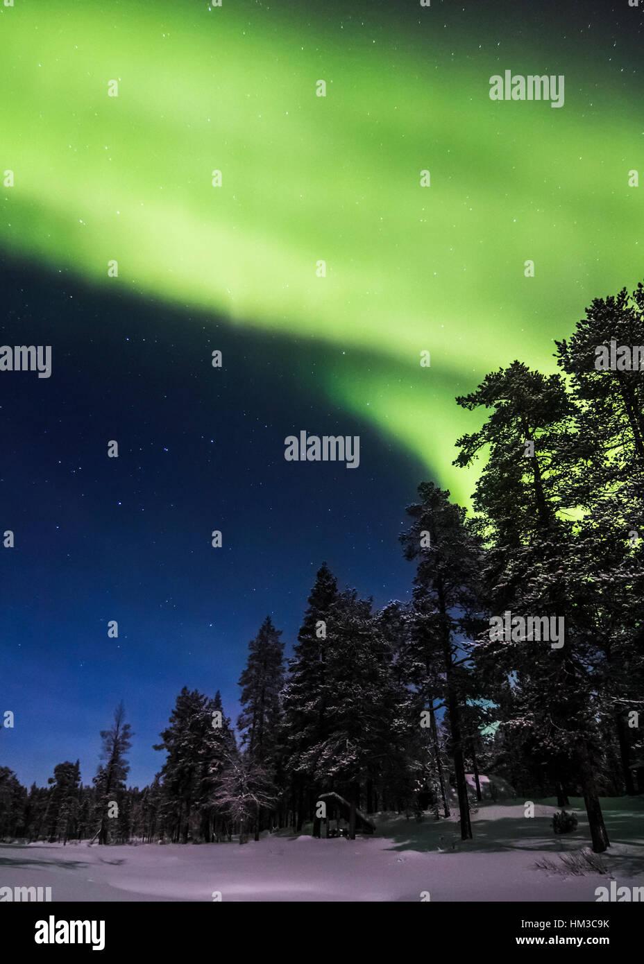 Northern lights in Urho Kekkonen national park, Finland - Stock Image