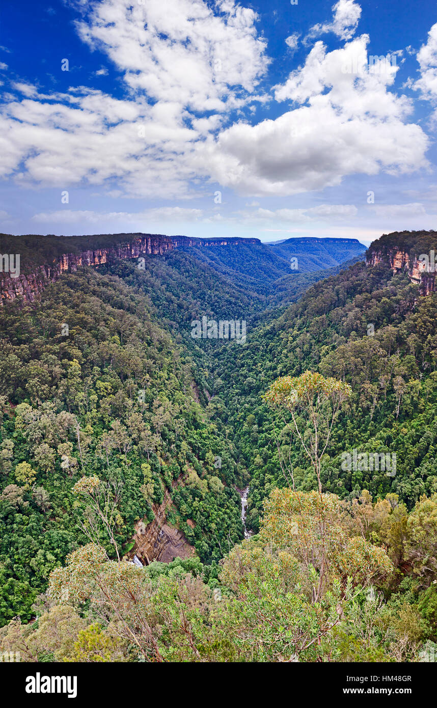 Vertical view along Yarrunga Valley in Morton national park of Great Dividing range in Australia. Evergreen forests - Stock Image
