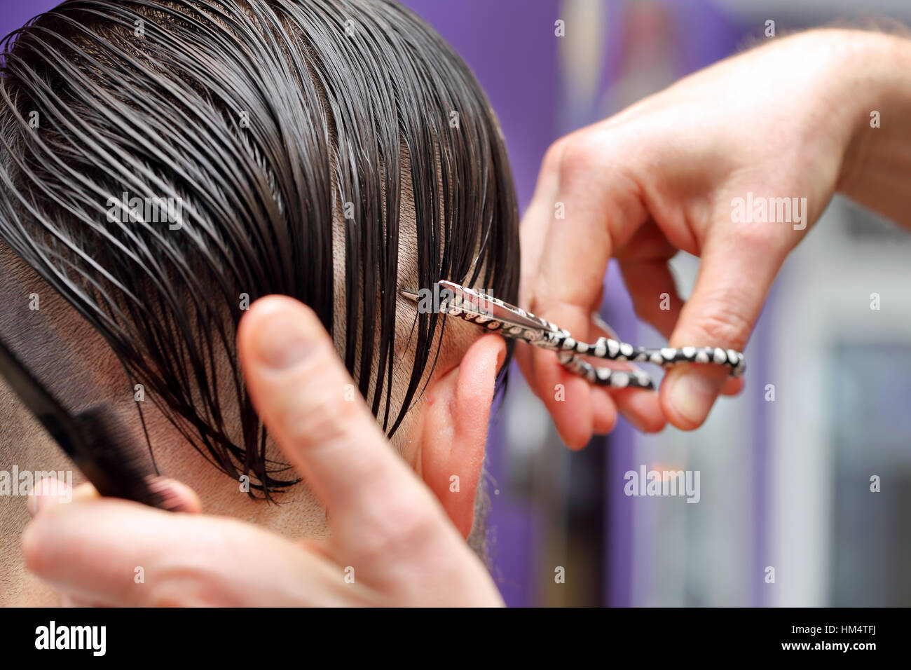 Hairdresser trimming hair with scissors - Stock Image