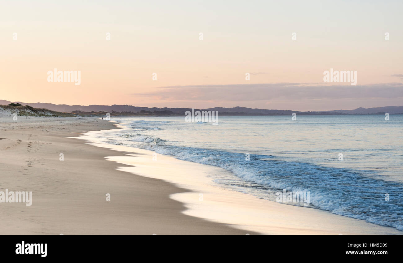 Beach at sunset, Waipu, Northland, New Zealand - Stock Image