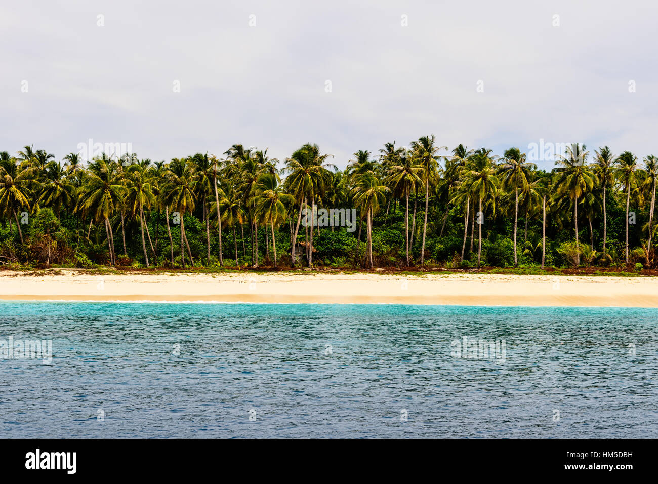 Tropical paradise - Stock Image