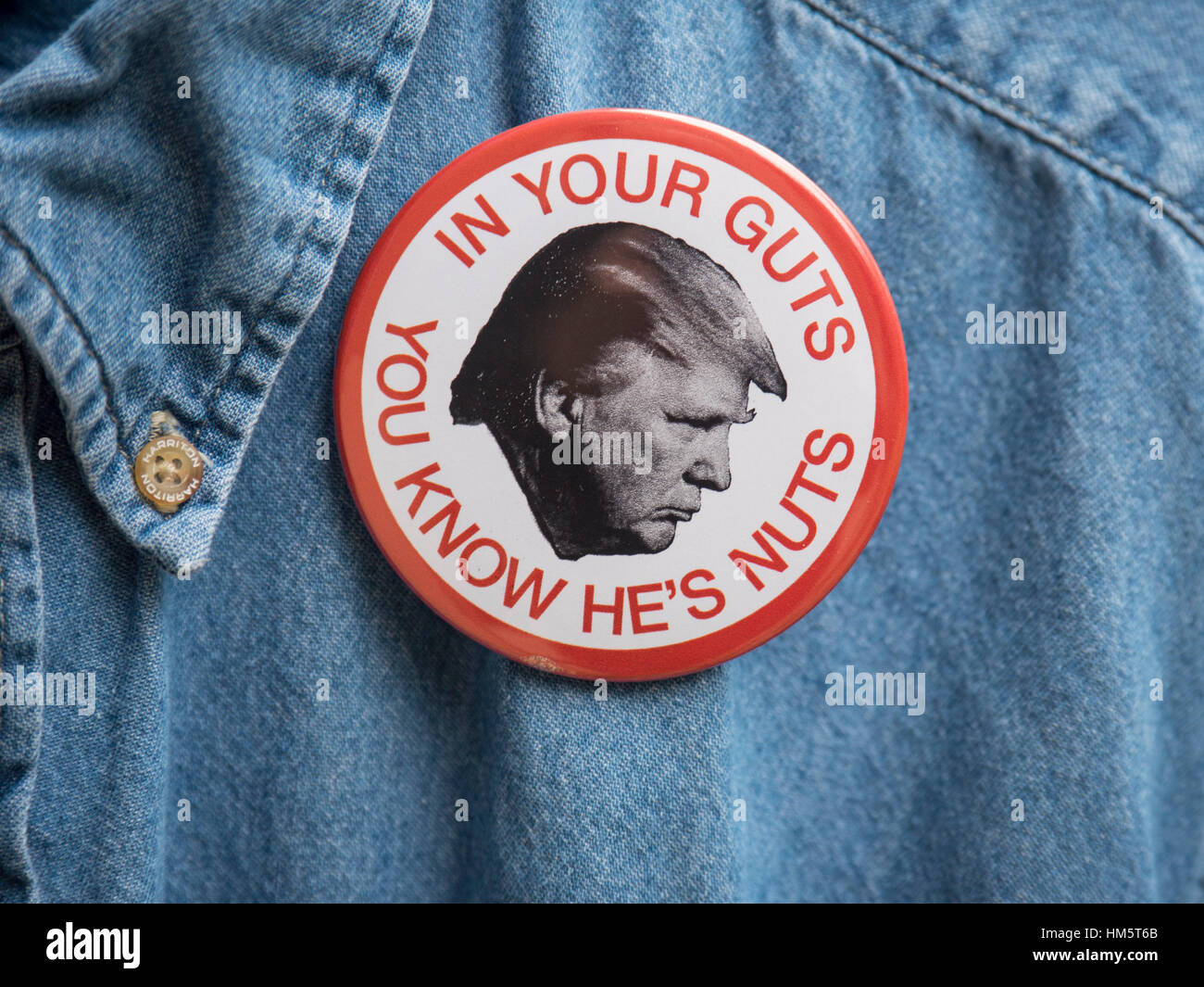 In Your Guts You Know He's Nuts Donald Trump protest button worn by a man demonstrating against the Trump administration - Stock Image