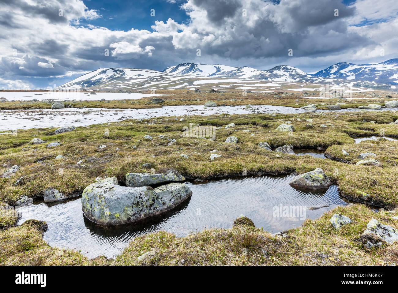 Valdresflya, Jotunheimen National Park region of Sogn og Fjordane Oppdalen, south Norway - Stock Image