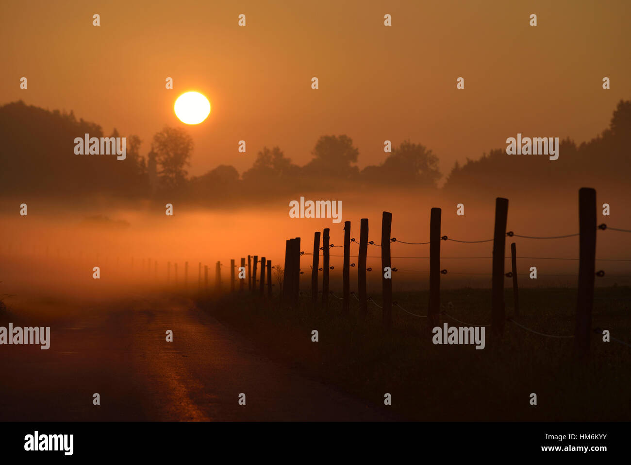 Rising Sun shines on foggy landscape - Stock Image
