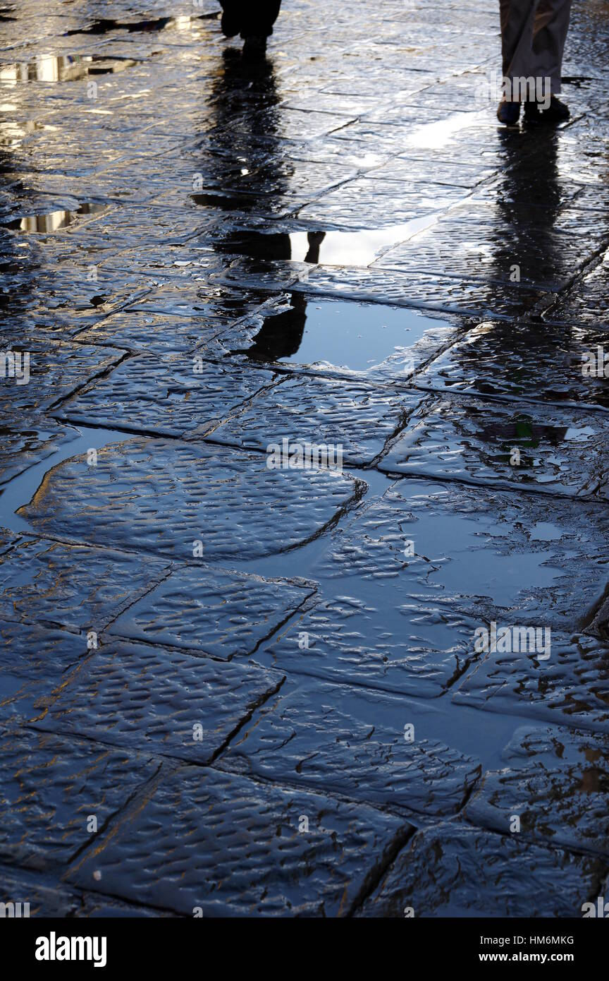Wet pavement - After rain reflections series - Vertical book cover design - Florence (Firenze), Tuscany, Italy, - Stock Image