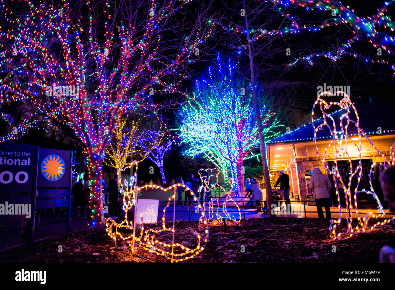 Holiday lights at the Smithsonian National Zoo's Zoo Lights event in ...
