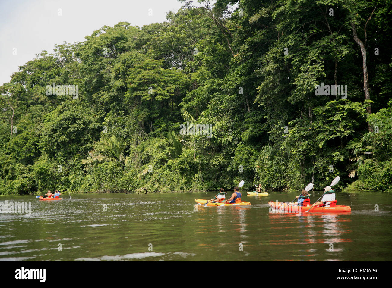 Tourists in Kayaks / Turistas en Kayak Rainforest / Bosque Lluvioso Tortuguero, Costa Rica. Code/Código #T0120 - Stock Image