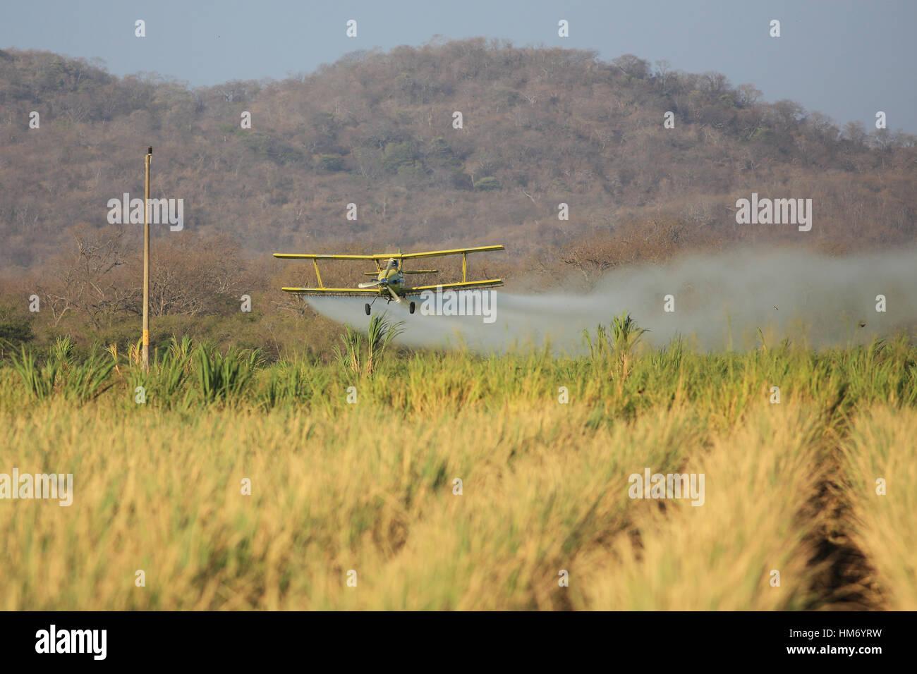Aeroplane spraying pesticide over a rice plantation near Palo Verde National Park, Guanacaste, Costa Rica. - Stock Image