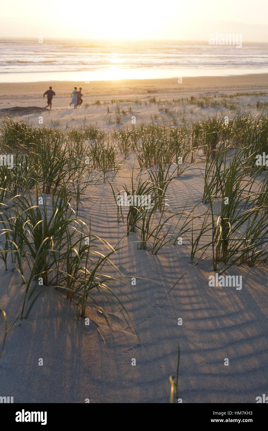 Friends running on the beach at sunset - Stock Image